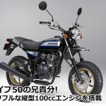 縦型スポーツモデル、ホンダ(HONDA) エイプ(APE)100
