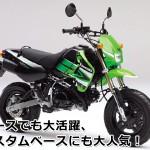 カワサキ(kawasaki) KSR110・KLX110・KSRプロ・KSRダート